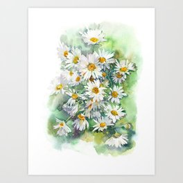 Watercolor chamomile white flowers Art Print