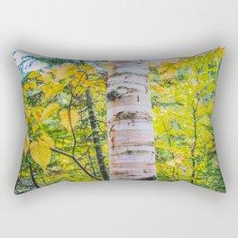 Judge CR Magney State Park, Minnesota 3 Rectangular Pillow