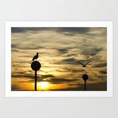 Birds in the sunset Art Print