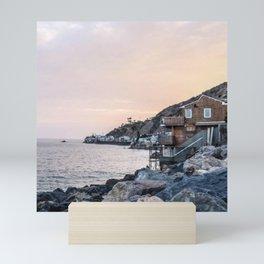 California Beach Mini Art Print