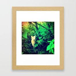 Sherkan Framed Art Print