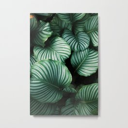 Foliage x Shiny Metal Print