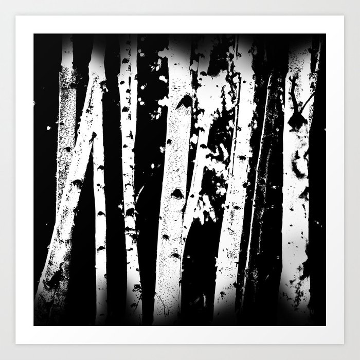 a367904d749 Black and White Birch Trees Fade Out Art Print by naturaldesign ...
