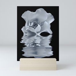 blue rose reflection Mini Art Print