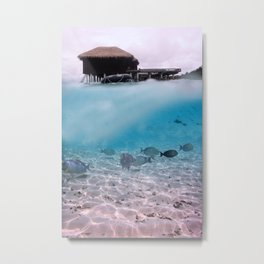 Tropical Maldives Snorkeling Fun Coral Fish In Turquoise Sea Metal Print