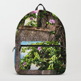 BUILDINGS AND BRAMBLE Backpack