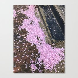 Spring in the West End (3) Canvas Print