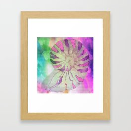 NAUTILUS SEA SHELL IMPRESSION Framed Art Print