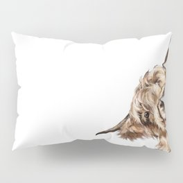 Sneaky Highland Cow Pillow Sham
