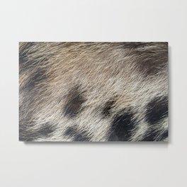 Pig Skin Hair Metal Print