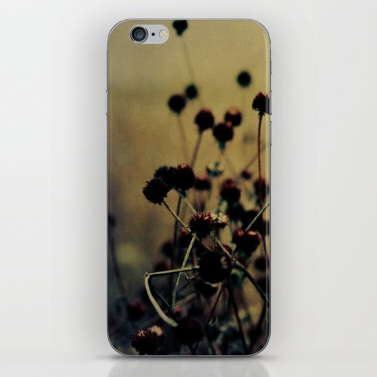 Enchanted iPhone & iPod Skin