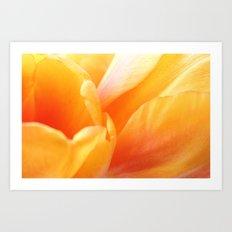 Sunny Yellow Tulip Petals Art Print