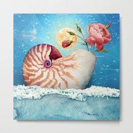 Fancy Nautilus Shell :: Fine Art Collage Metal Print