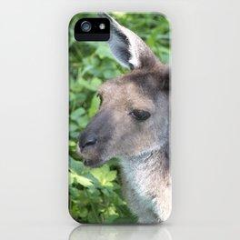 Kangaroo iPhone Case