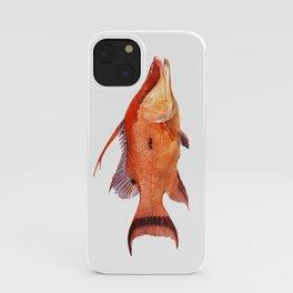 Hogfish iPhone Case
