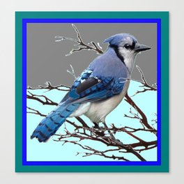 TEAL AMERICAN BLUE JAYS  GREY WINTER ART Canvas Print