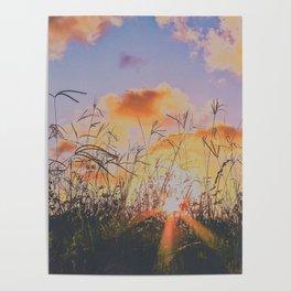 sunset through tall grass Poster