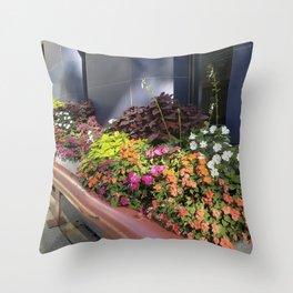 Madison WI Urban Color 1 Throw Pillow