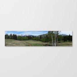 Tibble Fork Mountain Bike Trail Canvas Print