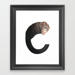 C-Chimpanzee Framed Art Print