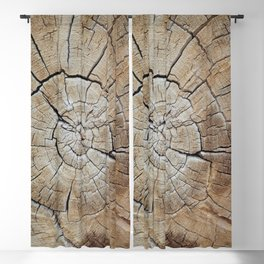 Tree rings of time Blackout Curtain
