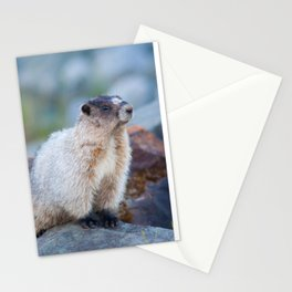 The Marmot Stationery Cards