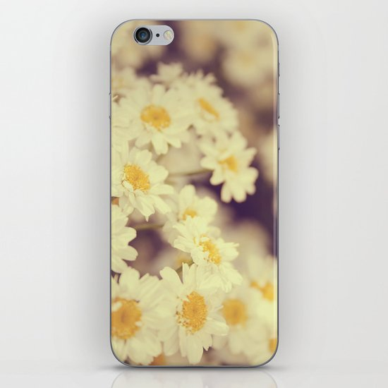 Daisy Heaven iPhone & iPod Skin