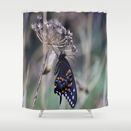 Butterfly emerging from cocoon Shower Curtain