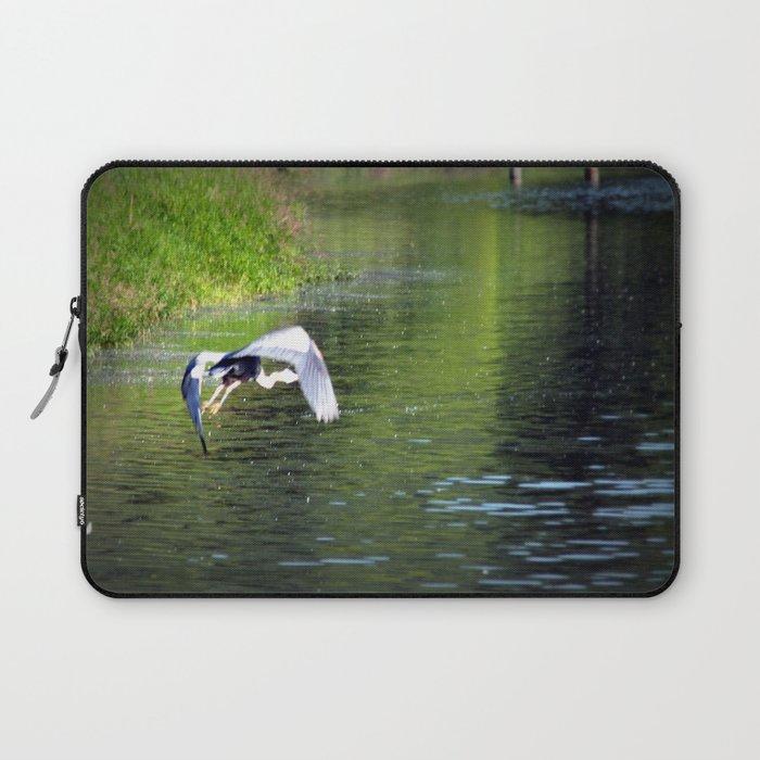 Great Blue Heron in flight, Trojan pond, near Goble, Oregon 3 Laptop Sleeve