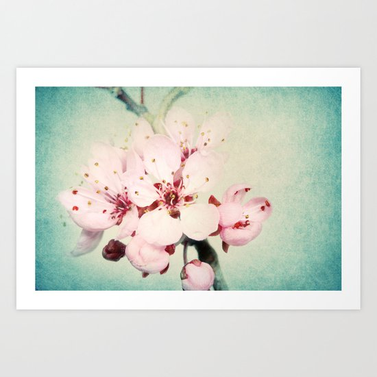 Blossom with Blue Art Print