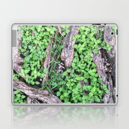 In the Fairies' Forest Laptop & iPad Skin