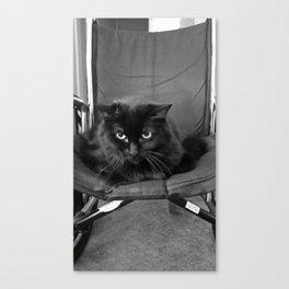 The Chair Thief Canvas Print