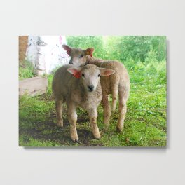 Two small helpers Metal Print