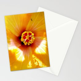 Yellow Hybiscus Stationery Cards