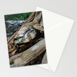 Jewel in the Wood Stationery Cards