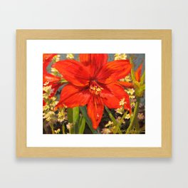 Lone Beauty — Red Daylily Blossom by L Diane Johnson Framed Art Print