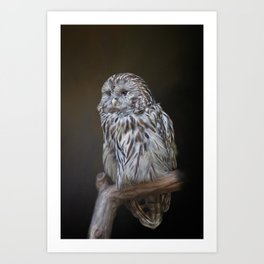 Lovely cute owl Art Print