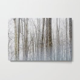 Smoky Forest Metal Print