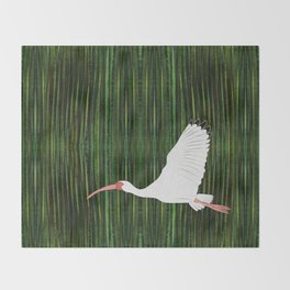 American White Ibis In Flight Throw Blanket