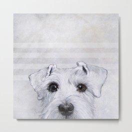 Schnauzer original Dog original painting print Metal Print