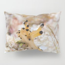 Reach for the stars nudibranch Pillow Sham