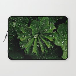 Dew On Rose Scented Geranium Leaves Laptop Sleeve