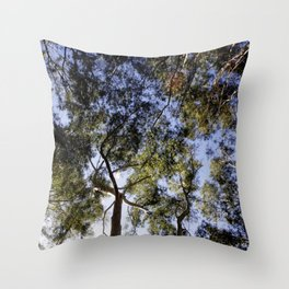 Eucalyptus Tree Canopy Throw Pillow