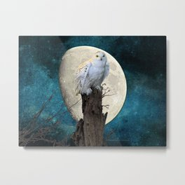 White Snowy Owl Bird Moon Blue A141 Metal Print
