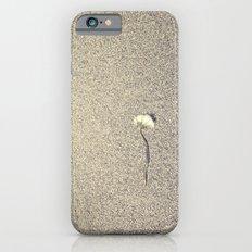 Wide Dandelion iPhone 6s Slim Case