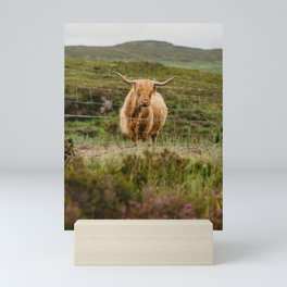 Highland Coo Mini Art Print