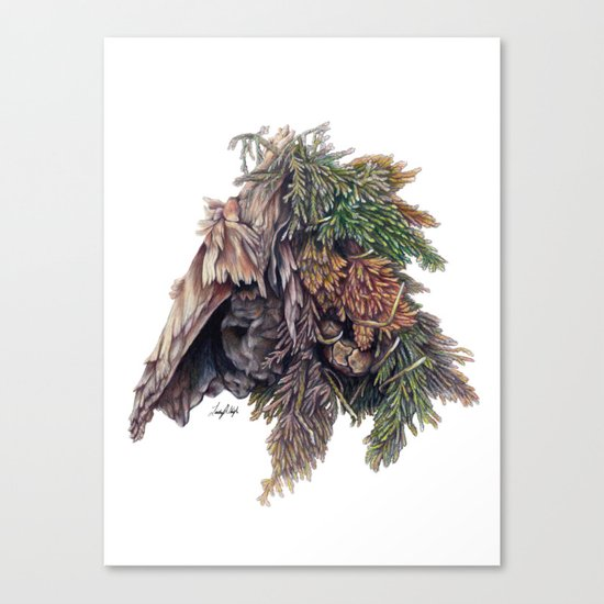 Colors of the Cypress Canvas Print