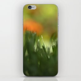 Fuzzy Landscape iPhone Skin