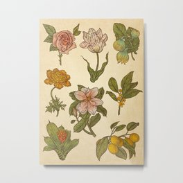 Botanical Flash Sheet 1 Metal Print