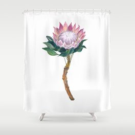 Protea Flower Watercolor  Shower Curtain
